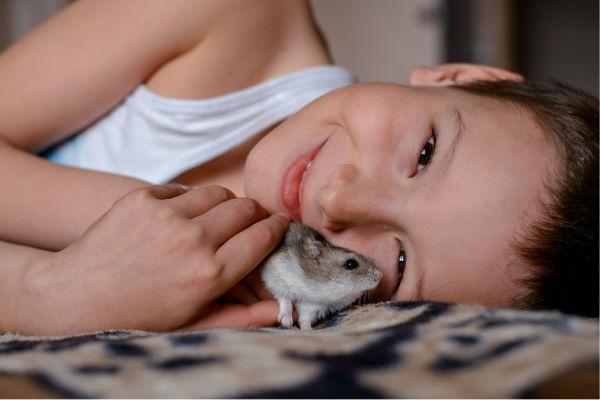 Haustiere für kleine kinder